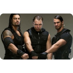 THE SHIELD (WWE) FRIDGE MAGNET