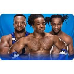 THE NEW DAY (WWE) FRIDGE...