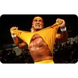 HULK HOGAN (WWE) FRIDGE MAGNET