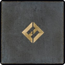 FOO FIGHTERS (CONCRETE AND...