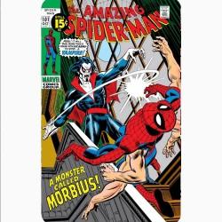 AMAZING SPIDER-MAN 101...